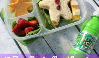 15 Fun Bento Box Lunches for Back to School