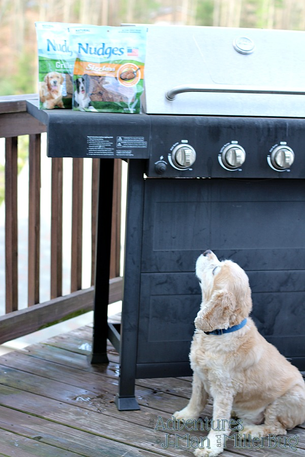 #NudgeThemBack #ad Nudges on Grill
