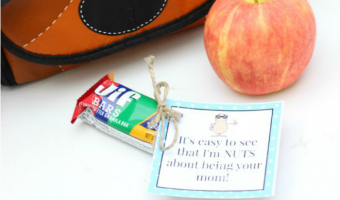 Make Lunchtime Fun with a Nutty Lunchbox Printable