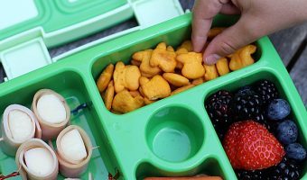 Organic Lunchbox Ideas for Picky Eaters