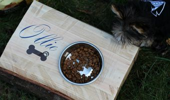 Personalized Dog Food Holder